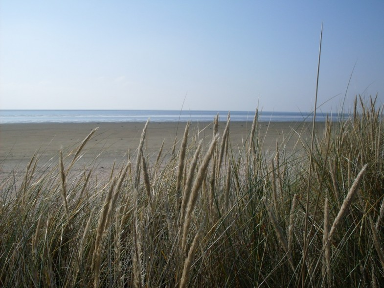 Fanö Strand Nordsee