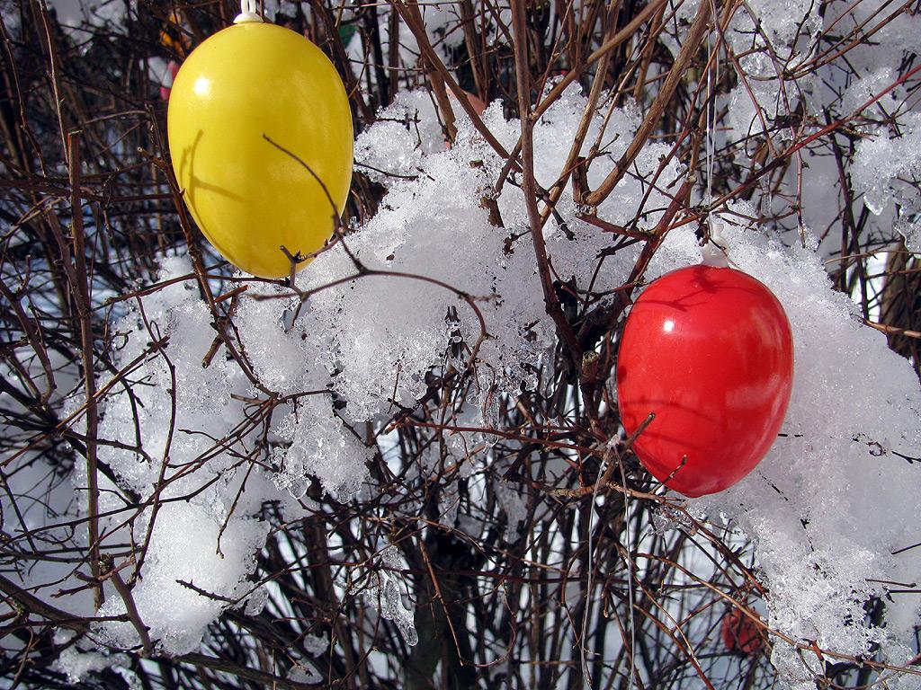 Ostern Ostereier Im Schnee Foto Blog